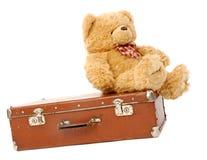 чемодан медведя Стоковые Изображения