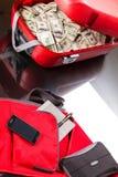 Чемодан с долларами Стоковые Фотографии RF