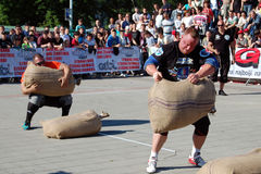 Чемпионат сильного человека Стоковые Изображения