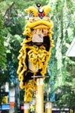 Чемпионат танца льва Стоковая Фотография RF