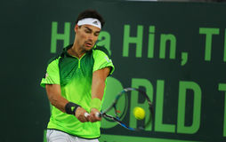 Чемпионат 2015 тенниса мира Стоковая Фотография RF