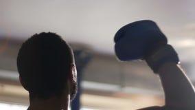 Чемпион бокса празднуя победу с мышечной рукой вверх, успешная спичка акции видеоматериалы