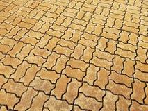 Червь кирпича или червь bricklaying на дорожке Стоковое Изображение