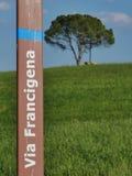 Через деталь francigena стоковое изображение rf
