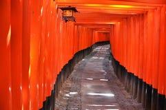 Через оранжевые стробы стоковые изображения