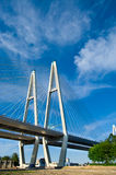 через связанное реку кабеля моста Стоковое фото RF