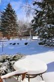 Через солнечный день после предпосылки снежностей Стоковое Изображение RF