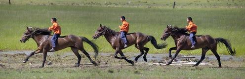 через степь horseback Стоковая Фотография RF