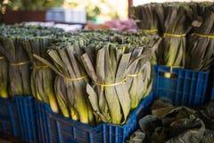 Черенок лук-пореев, зеленых овощей, продукции местного рынка в изображении конца коробки поднимающем вверх Взгляд сверху вегетари Стоковая Фотография