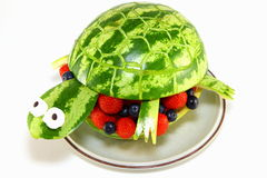Черепаха арбуза стоковое изображение