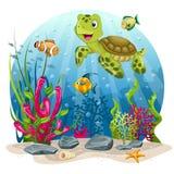 Черепаха и рыбы в море бесплатная иллюстрация
