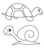 Черепаха и улитка бесплатная иллюстрация