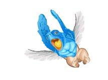 черепаха летания Стоковая Фотография RF