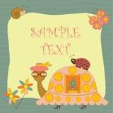 черепаха открытки Стоковые Изображения RF