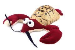 черепаха рака панцыря Стоковые Изображения RF