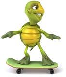 черепаха скейтборда потехи бесплатная иллюстрация