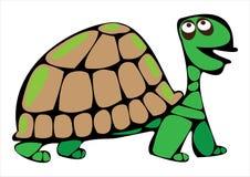 Черепаха шаржа вектора изолированная на белизне Стоковые Фото