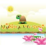 Черепаха шаржа на зеленой траве Стоковая Фотография