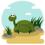 Черепаха шаржа усмехаясь Стоковое Изображение RF