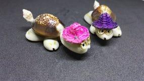 Черепахи сделанные раковин стоковая фотография