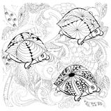 черепахи фантазии Стоковая Фотография