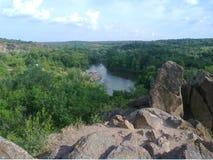 Черепашка реки южная Стоковые Изображения