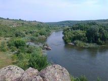Черепашка реки южная Стоковые Изображения RF