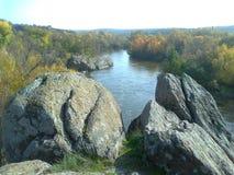 Черепашка реки южная Стоковые Фото