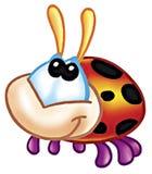 черепашка Стоковая Фотография