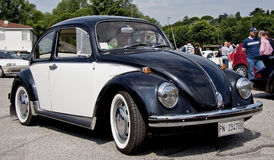 Черепашка VW Стоковое Фото