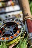 Черепашки и дорога рыбной ловли мухы с реальным Стоковые Изображения RF