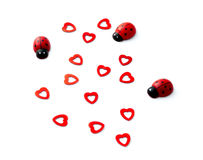 Черепашки и сердца дамы на день валентинок стоковые изображения rf