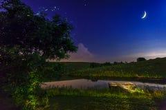 Черепашки молнии Стоковое фото RF