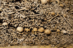 Черепа и косточки катакомб Парижа Стоковое фото RF