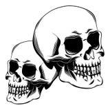 черепа 2 иллюстрация вектора