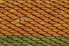 Черепицы виска Стоковая Фотография RF