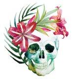 Череп акварели с цветками Стоковые Фотографии RF