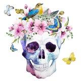 Череп акварели с цветками бесплатная иллюстрация