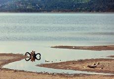 череп берега буйвола косточек африканца Стоковые Изображения RF