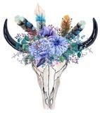 Череп быка акварели с цветками и пер Стоковые Фото