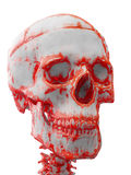 Череп запятнанный кровью Стоковые Фотографии RF