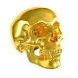 Череп золота Стоковые Изображения