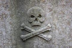 Череп и кости на камне стоковая фотография rf