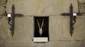 Череп козы и распятий Стоковая Фотография RF