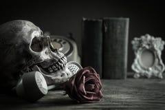 Череп натюрморта Стоковые Изображения