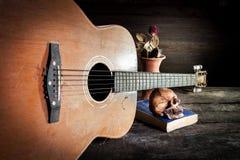 Череп на голубой книге и старой гитаре, цветке вазы на деревянном Стоковые Фото