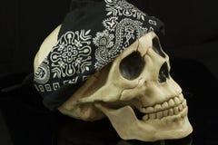 череп пирата Стоковые Фотографии RF
