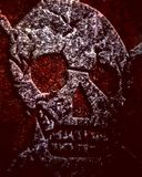 череп пирата Стоковые Изображения