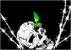 череп предпосылки Стоковые Изображения RF