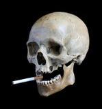череп сигареты Стоковая Фотография RF